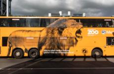 Auckland Zoo Double Decker Bus