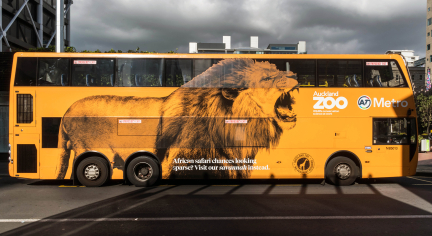 Auckland Zoo Double Decker Bus